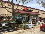 Store Front Cedar Falls Front