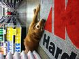 Store mascot Tana