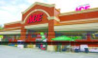 Store Front Ace Hardware Suwanee